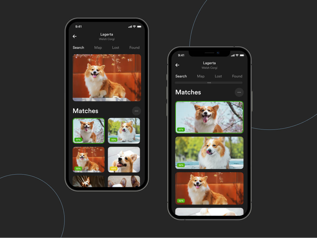 dog face recognition matches